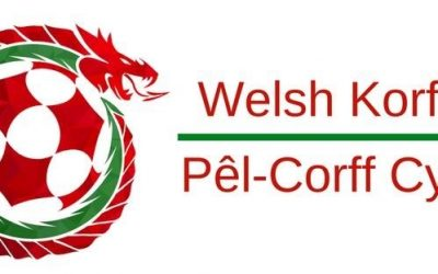 Wales Assistant Coach Job Advertisement